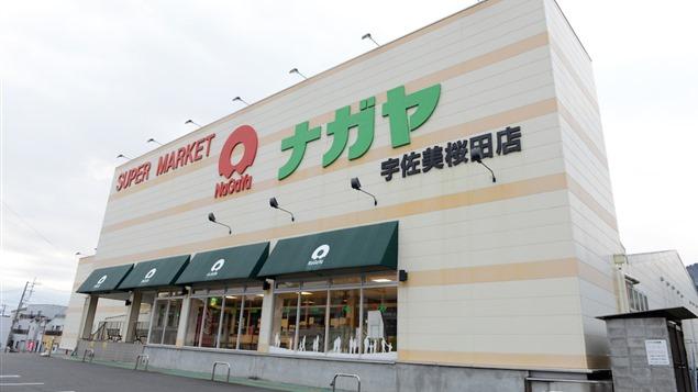 桜田店(宇佐美)