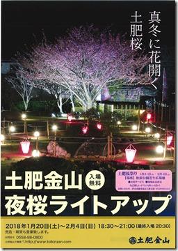 夜桜ライトアップチラシ1