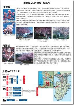 夜桜ライトアップチラシ2